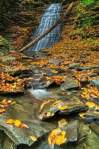 NY Waterfalls Fall 2019-12