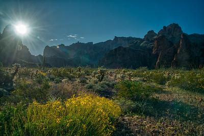 Kofa Mountains AZ 2020-15