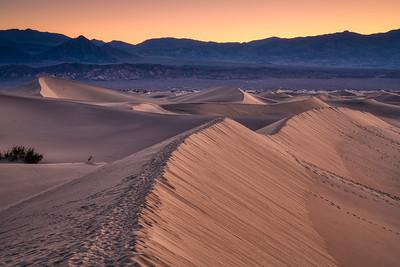 Death Valley Spring 2019-6