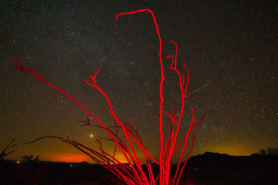 Kofa Mountains AZ 2020-13