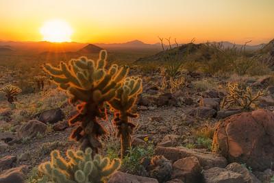 Kofa Mountains AZ 2020-8