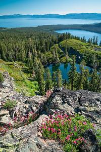 Tahoe Summer 2018-3