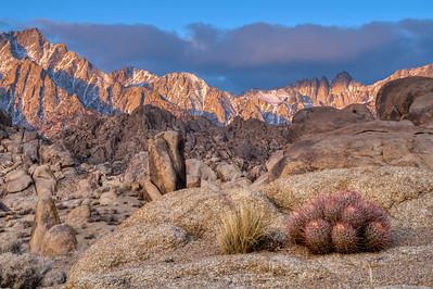 Eastern Sierra Winter 2021-5