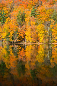 Vermont Fall 2019-16