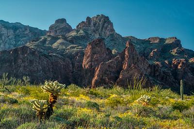 Kofa Mountains AZ 2020-16