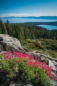 Tahoe Summer 2018-2