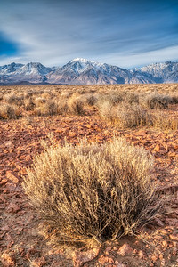 Eastern Sierra Fall 2018-4