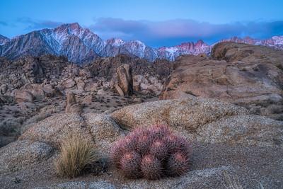 Eastern Sierra Winter 2021-1
