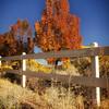 Fall in Boise, ID<br /> 10/11/18
