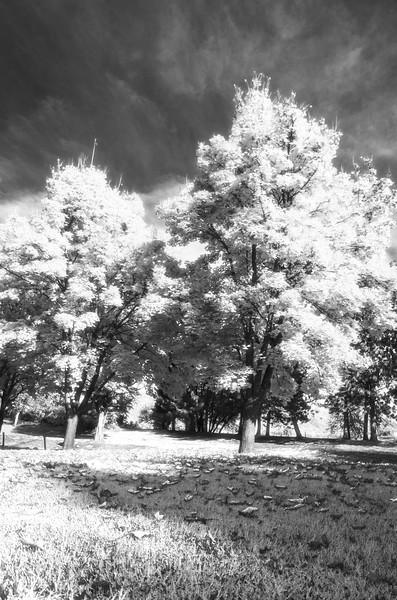 Black Canyon Park<br /> Idaho<br /> October 2017