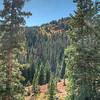 2017 Rocky Mountain National Park 972_3_4_5_6