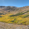 The meadow just below the Alpine Visitor Center.