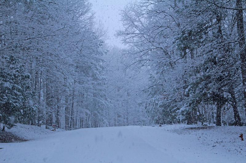 Snow 409