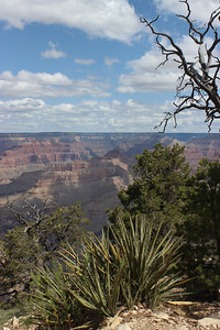2017-05-08  Grand Canyon