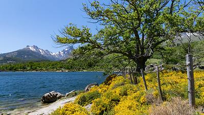 Lac de Calacuccia (Niolo - Haute Corse)