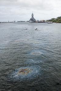 20185-04-16  Pearl Harbor Memorial