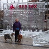 Red Sox Ice Sculpture