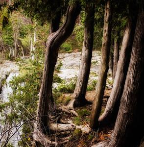 Eugenia Falls Ontario