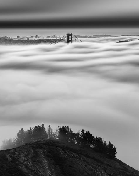 Nature vs City