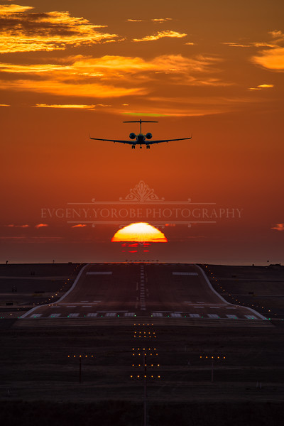 """Sunset Flight"""