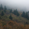 Some subdued fall colors and fog during an autumn morning along the high elevation mountains of the Monongahela National Forest in West Virginia.