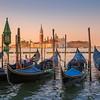 Rise and Shine Venice