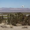 Drone flight to New Mudpots Salton Sea