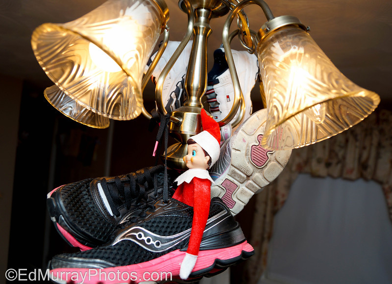 Shoe Ride: Happy Monday!  Continuing with the antics of the elf.... This time he put the family's sneakers on to the chandelier and then hopped in one of them.    12/17/2012