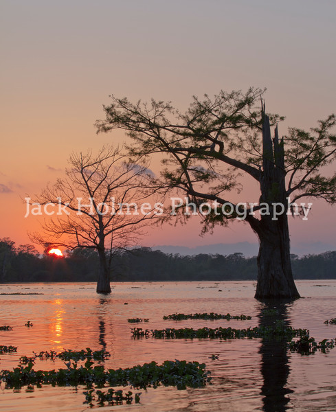 Sunset in the Atchafalaya Basin