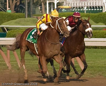 Curlin (Robbie Alborado up) comes up to Past The Point, who had set a torrid pace under Edgar Prado