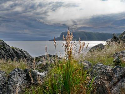 Newfoundland, Round Harbour