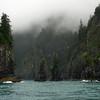 Alaska, Resurrection Bay, Seward, Spire Cove