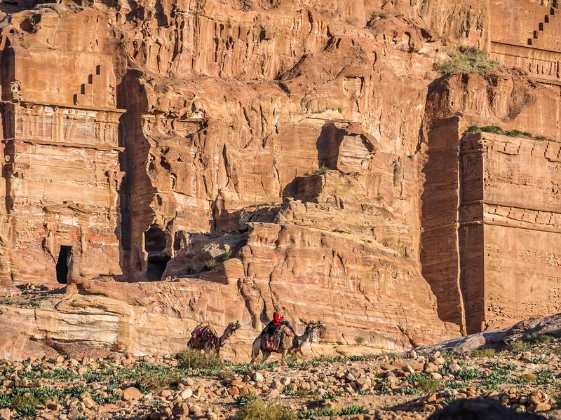 Bedouin Camels and the Tombs, Petra, Jordan