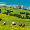 The Perfect Pastures, Seiser Alm in South Tyrol, Italy