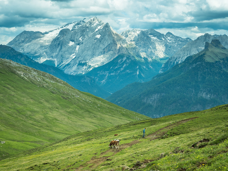 Mountain Farmer and the Marmolada, South Tyrol, Italy