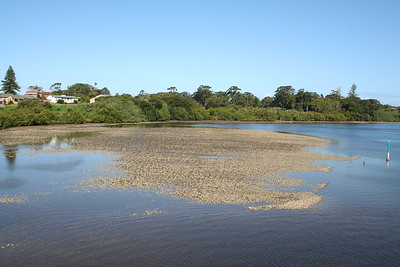 Oysters Bank