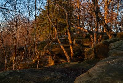 Landscape   Cuyahoga Valley National Park
