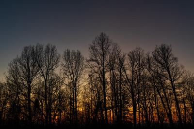 Landscape: Sunset, The Ledges   Cuyahoga Valley National Park