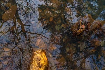 Waterportrait: Ouachita National Forest