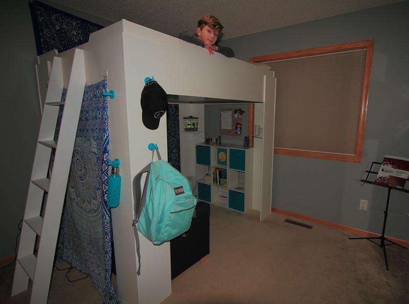 Avians Loft Bed
