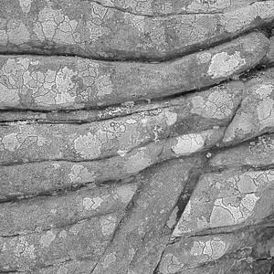 Rock Detail #5
