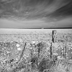 Flagstone Dyke #1