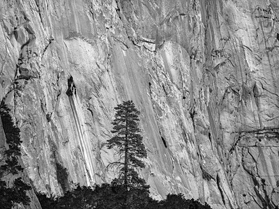 Yosemite Rock Face