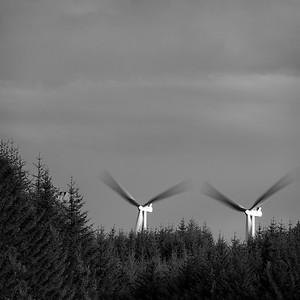 Renewables #6