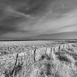 Flagstone Dyke #2