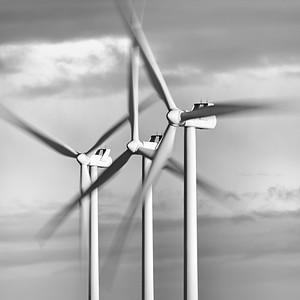 Renewables #8