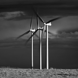 Renewables #4