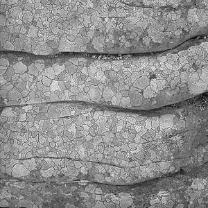 Rock Detail #2
