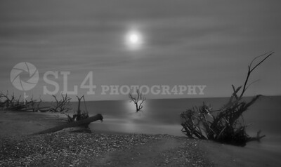 Moonlight @ Botany Bay Beach