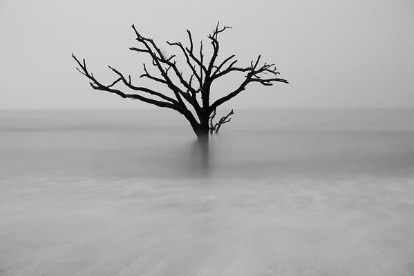 Botany Bay (B&W)